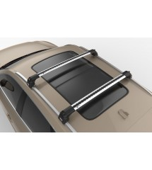 Buick Enclave Turtle Roof...